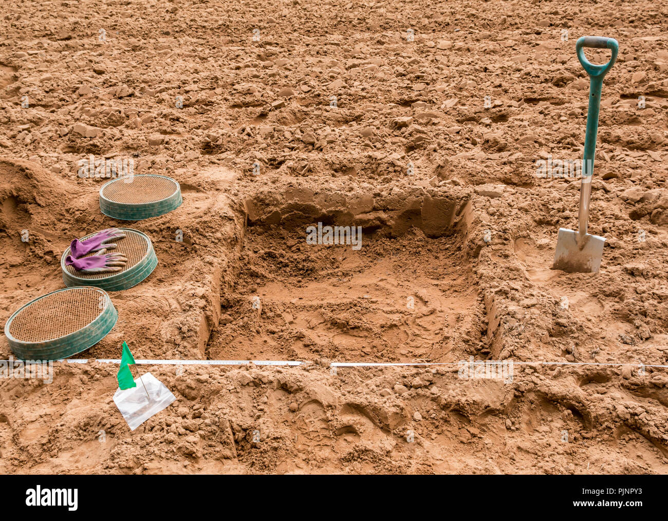 John Muir Country Park, Dunbar, East Lothian, Scotland, UK, 8th September 2018. East Lothian Council Archaeology Service test digging pits in an earth field to find evidence of a rediscovered Neolithic agricultural settlement. The test pits are thought to be the site of a Neolithic settlement where flints have been found Stock Photo