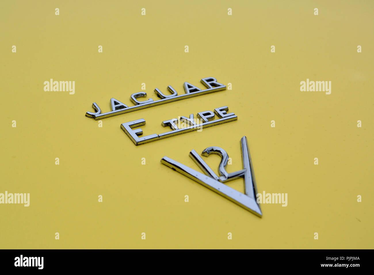 Close up picture of a classic Jaguar E Type car - Stock Image