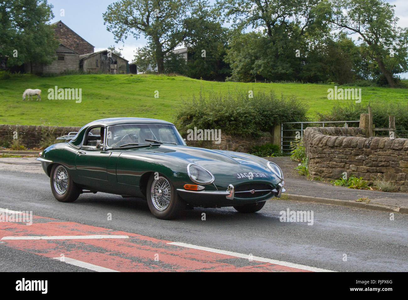 JAG733N GREEN 1988  Jaguar Xj-S AutoClassic, vintage, veteran, cars of yesteryear, restored collectibles at Hoghton Tower Class Cars Rally, UK - Stock Image