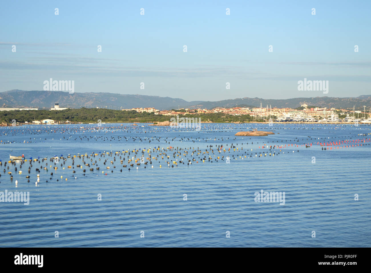 View to Olbia harbor from cruise ship, Sardinia island - Stock Image