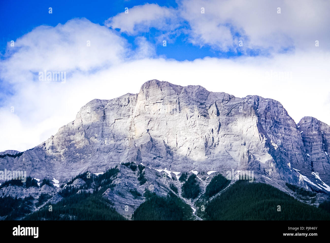 A view of the Three Sisters Mountain looking up from the the trail. Stock Photo
