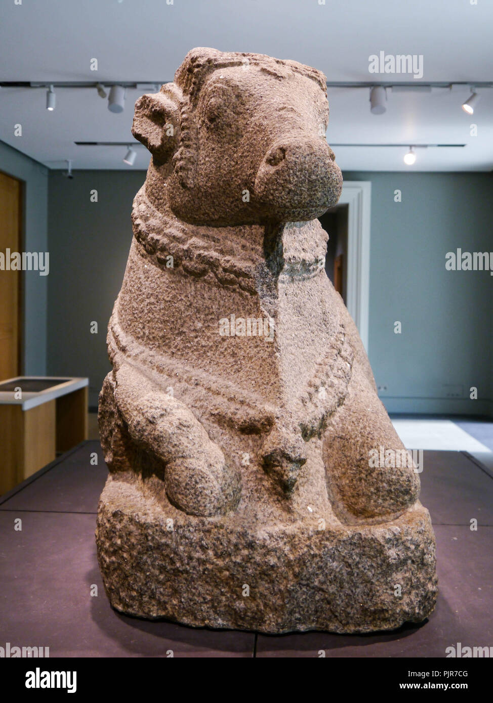 A sculpture of the humped bull Nandi from the 16th century, on display in the British Museum, London, England - Stock Image