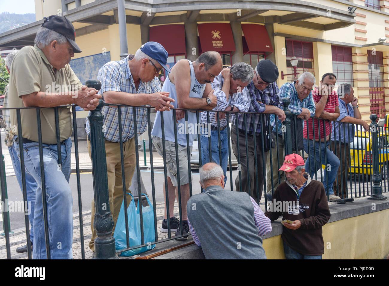 Men, card game, Funchal, Madeira, Portugal, Maenner, Kartenspiel - Stock Image