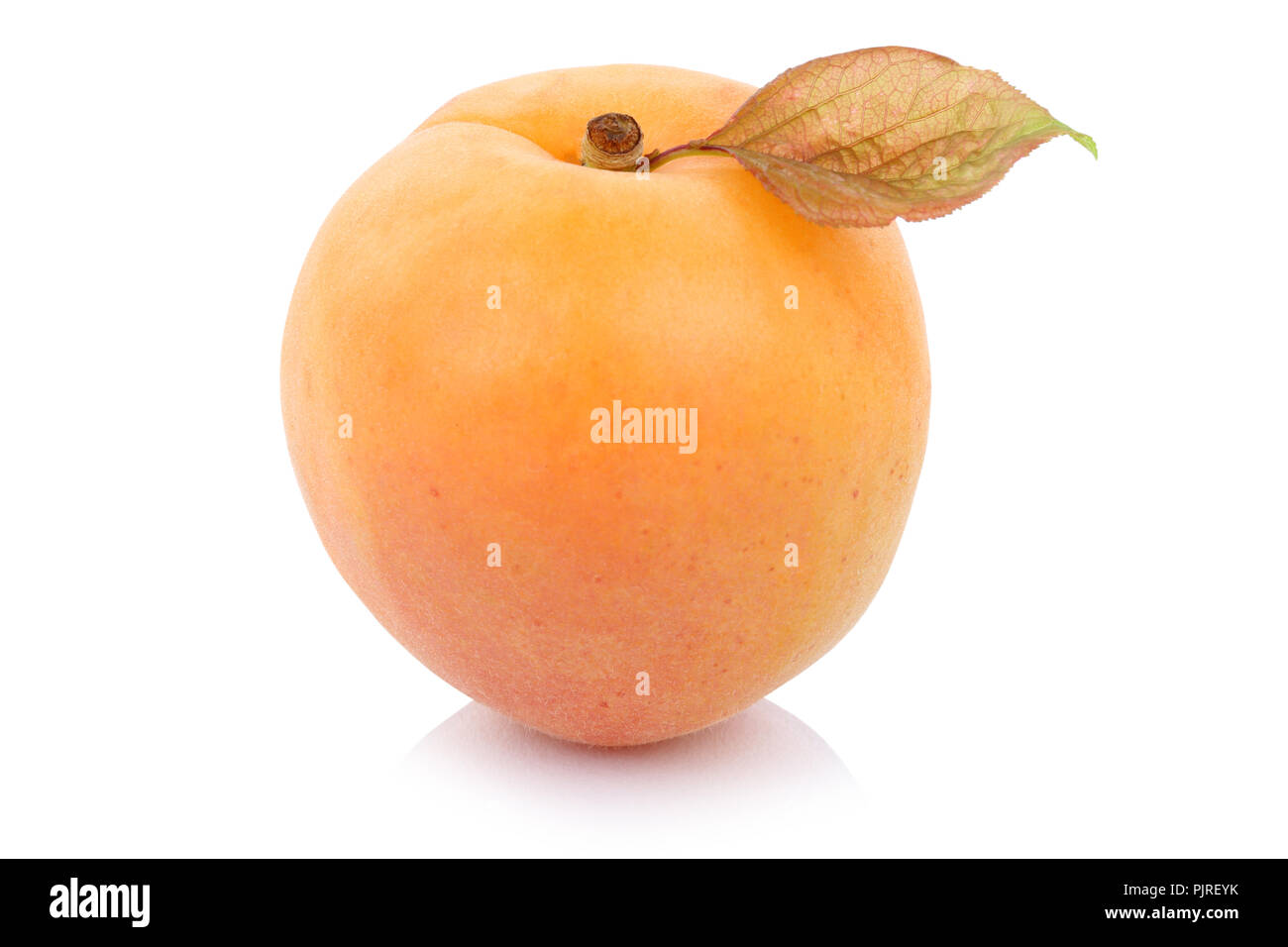 Apricot fresh fruit isolated on a white background - Stock Image