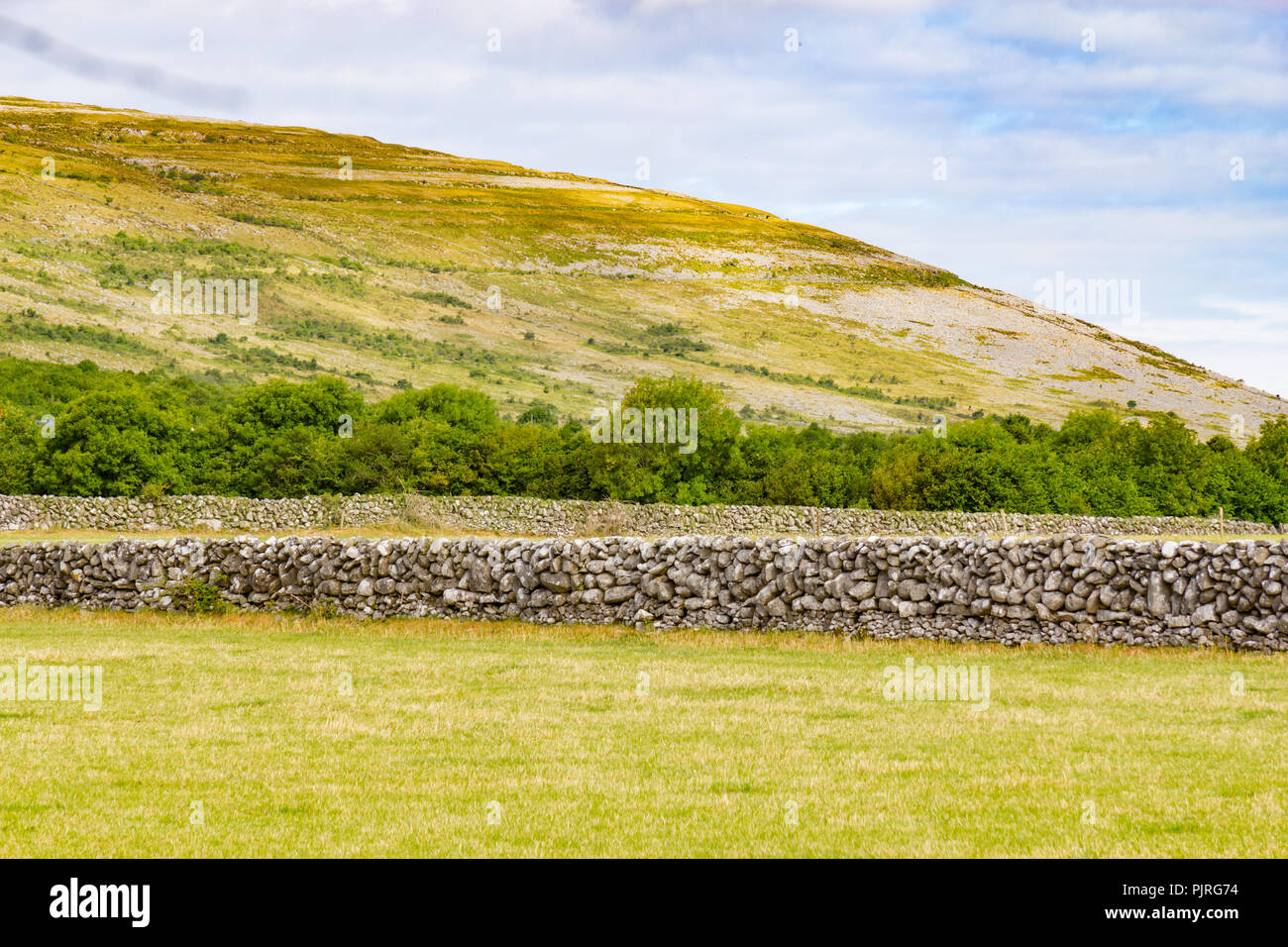 Stone walls with Mountain and vegetation in Ballyvaughan, Ireland - Stock Image