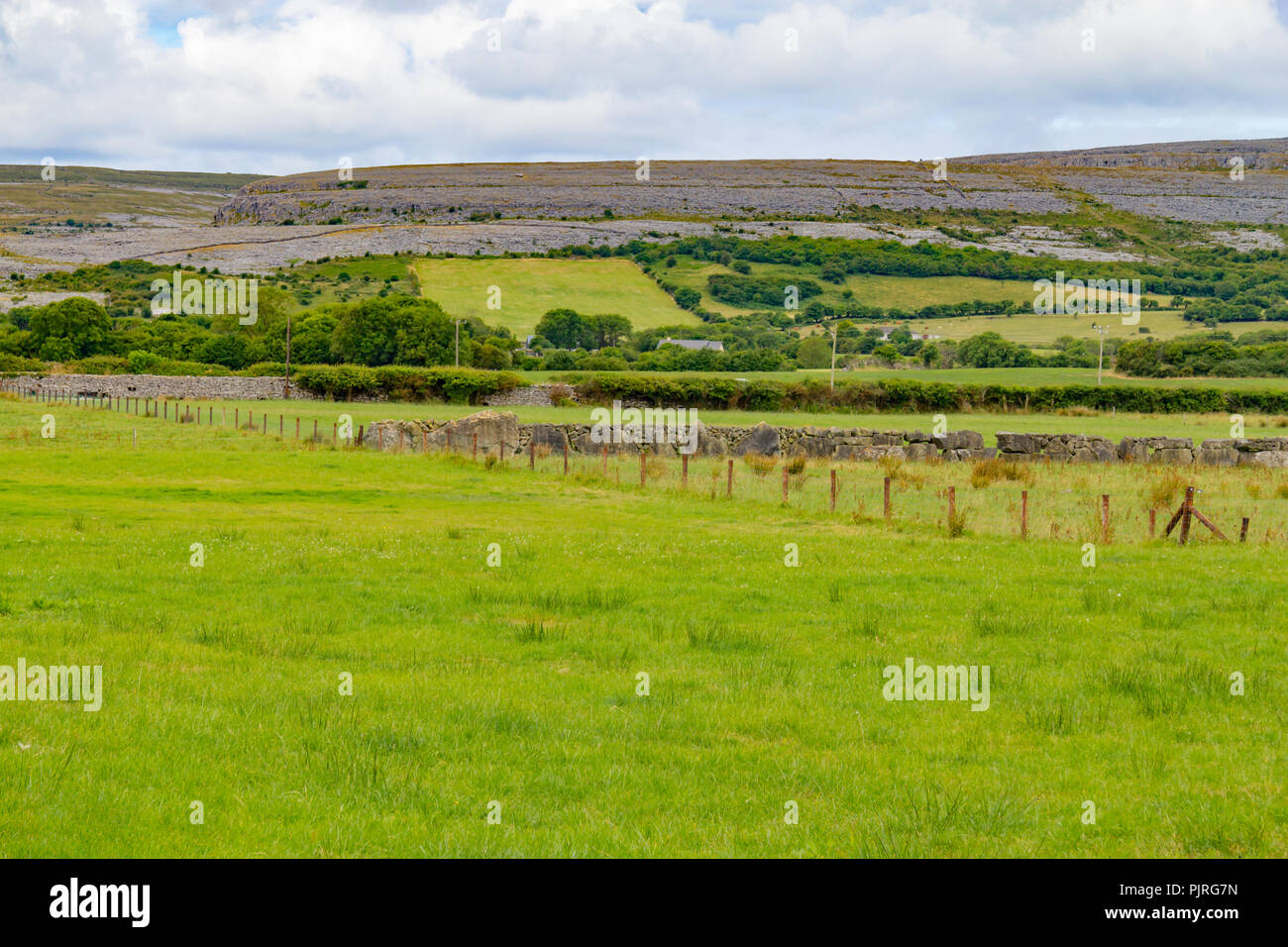 Farm field with Mountain and vegetation in Ballyvaughan, Ireland - Stock Image