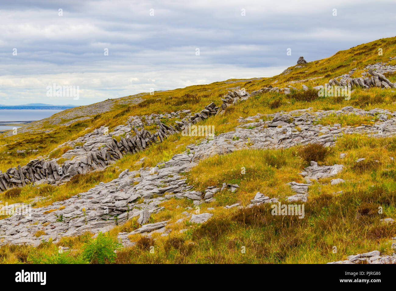 Mountain with rocks and vegetation in Ballyvaughan, Ireland - Stock Image