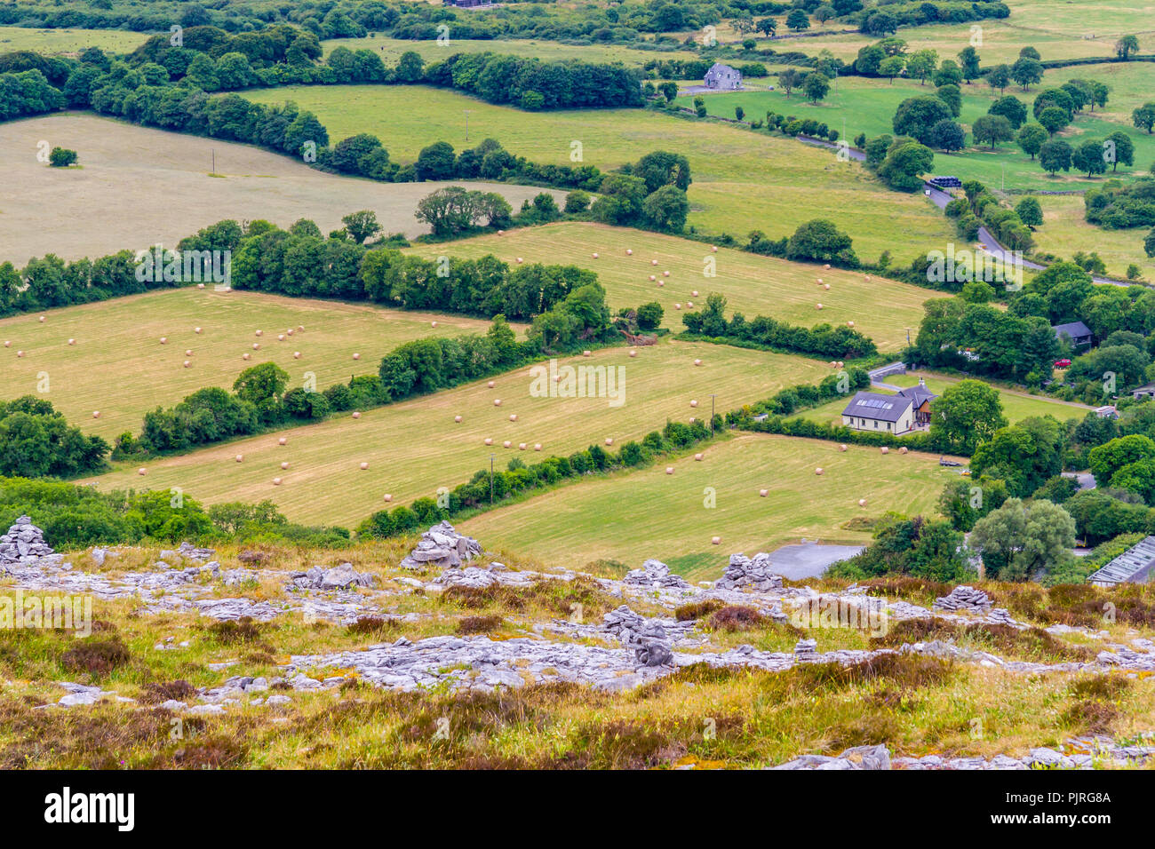 Farm field, mountain and vegetation in Ballyvaughan, Ireland - Stock Image