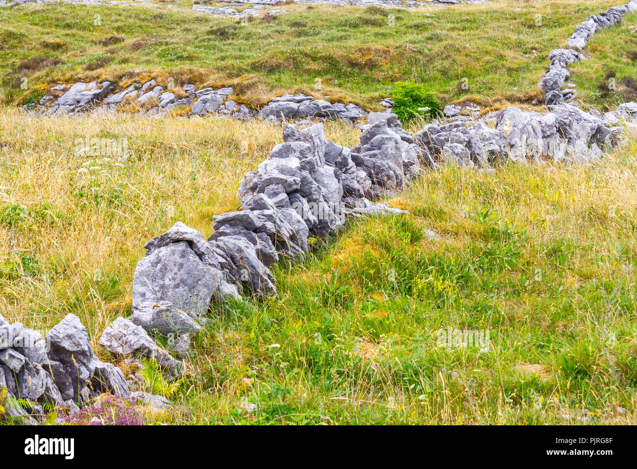 Stone wall and Farm field in Ballyvaughan, Ireland - Stock Image