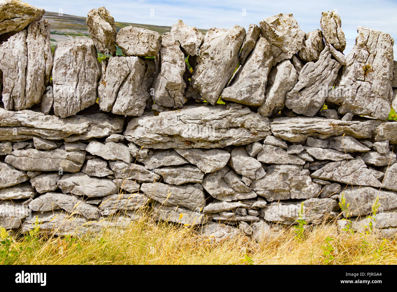 Stone wall and vegetation in Ballyvaughan, Ireland - Stock Image