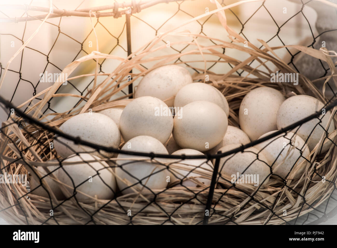 brown eggs at hay nest in chicken farm presented in the form of close-up photography and vintage tones. - Stock Image