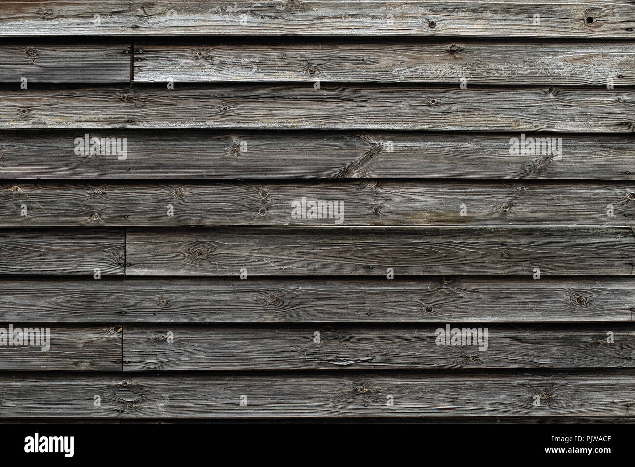 Panelled wood shed wall - Stock Image