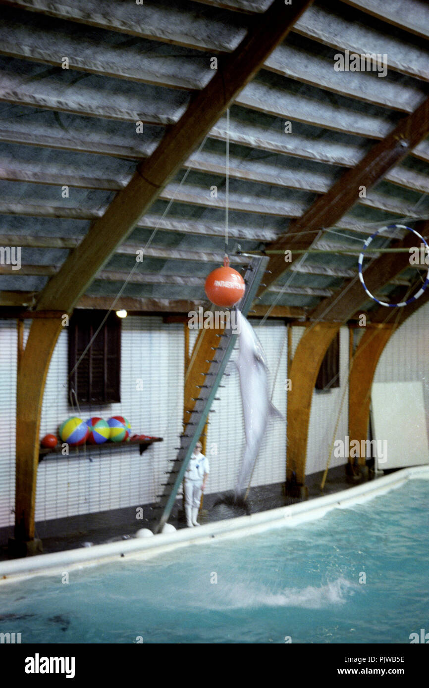 The Antwerp Zoo in the nineties (Belgium, 10/1992) Stock Photo