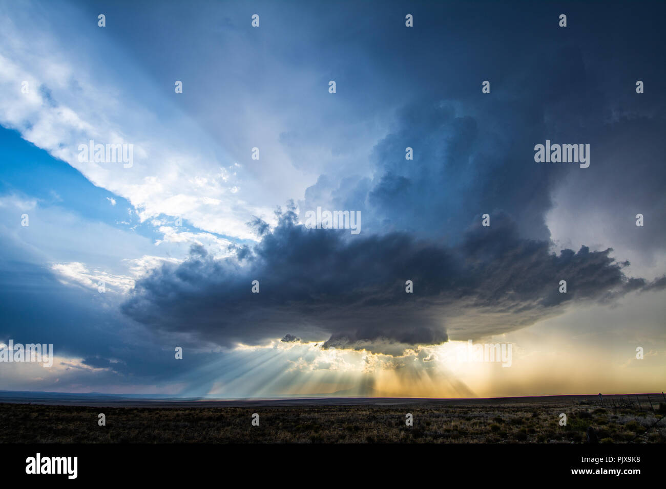 Low-precipitation supercell spins outside of Roswell, New Mexico, near sunset - Stock Image