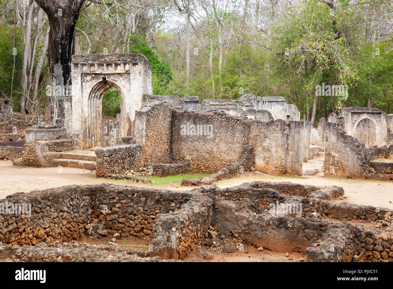 RUINS OF GEDE, WATAMU, KENYA, AFRICA -  The ruins of the Swahili town of Gede founded in the 12th century - Stock Image