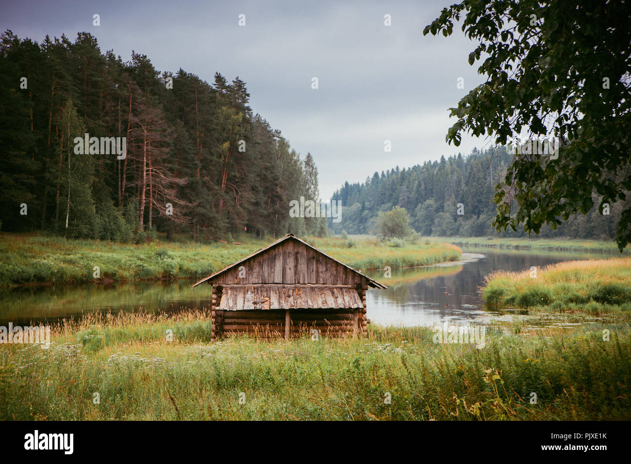 A log cabin on the river bank among the pines, in autumn Stock Photo