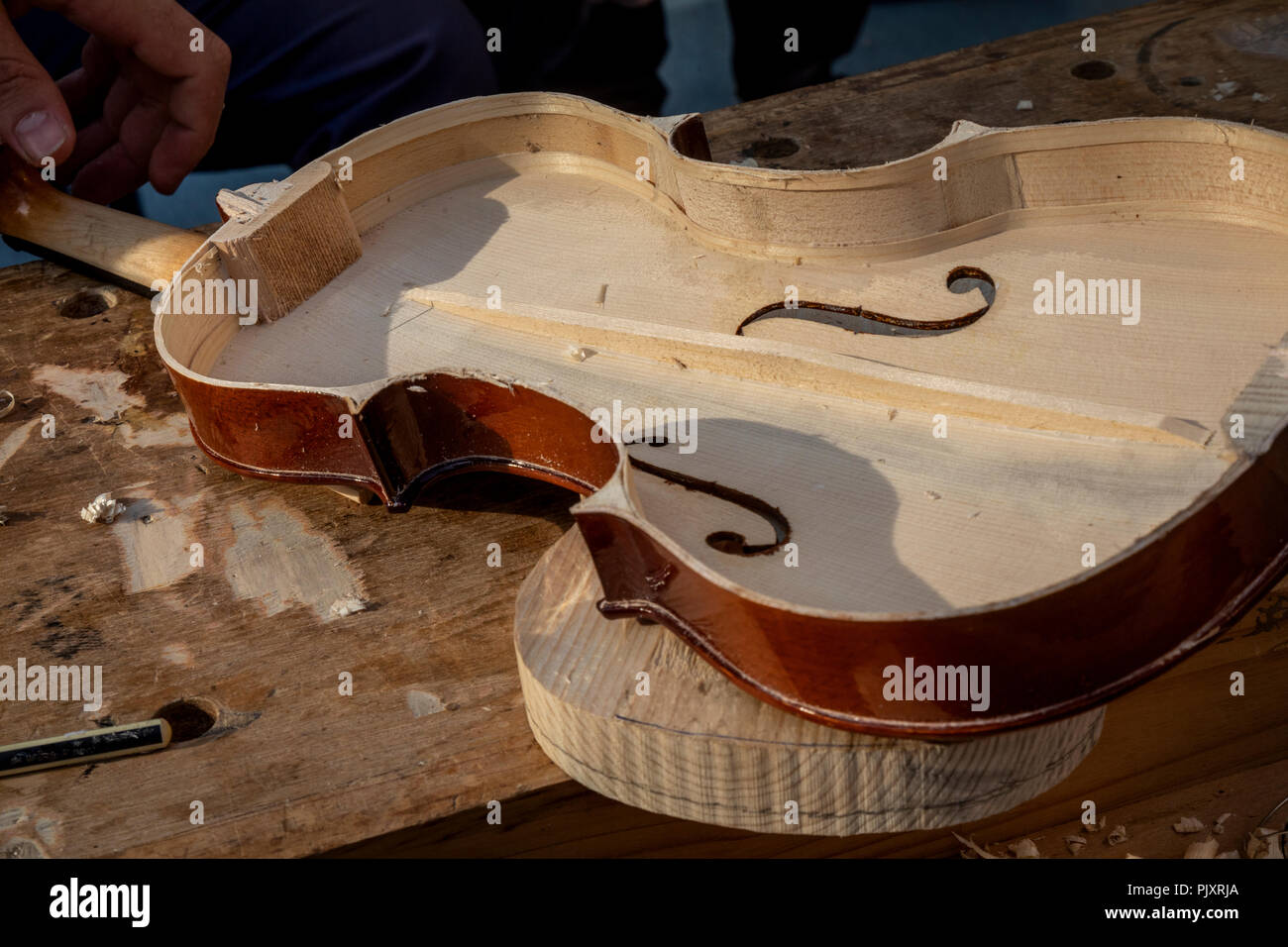 A master makes a musical violin instrument - Stock Image