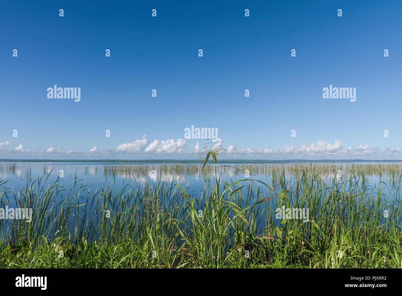 Lake Apopka Florida Horizon - Stock Image