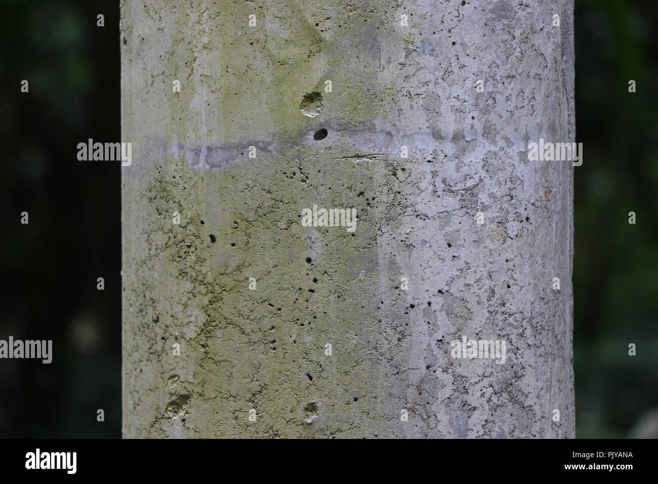 Two Tone Column - Stock Image