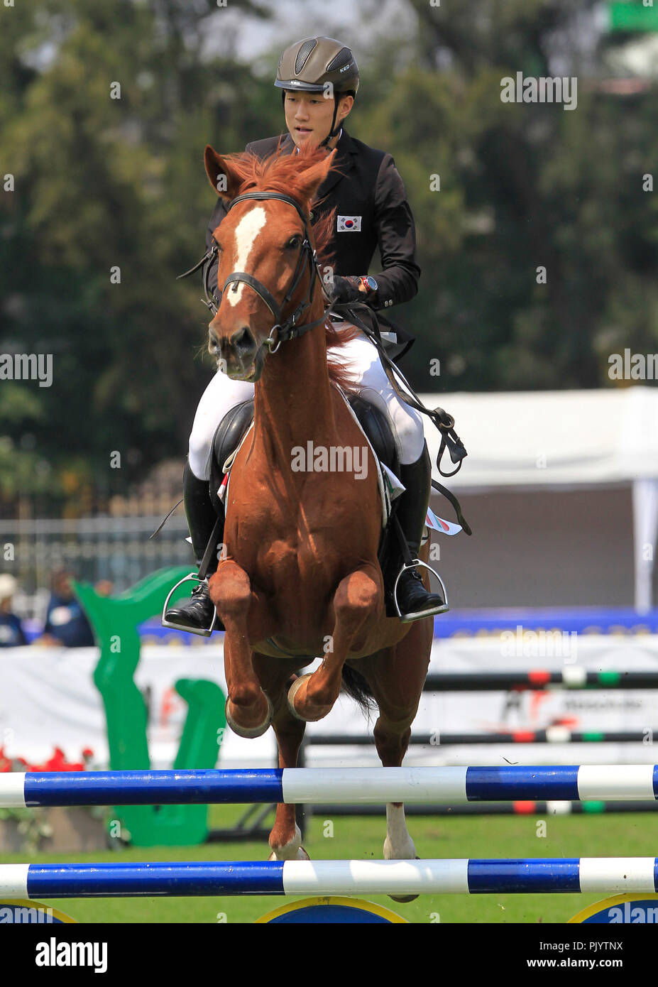 The Korean Changwan Seo competes in the mixed relay equestrian jump event held in the framework of the Modern Pentathlon World Championship in Mexico City, Mexico, 09 September 2018. EFE/Mario Guzman - Stock Image