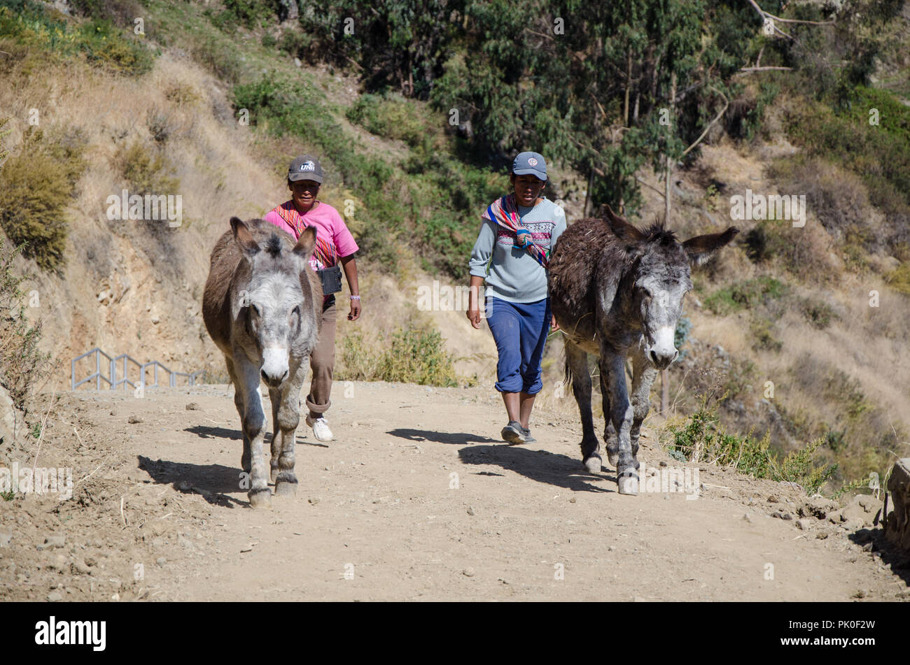 Lima, Peru - 3 SEPTEMBER 2018: Farmers and citizens in the Marcahuasi mountains. Two Andean women walking in the mountains with two cargo donkeys - Stock Image