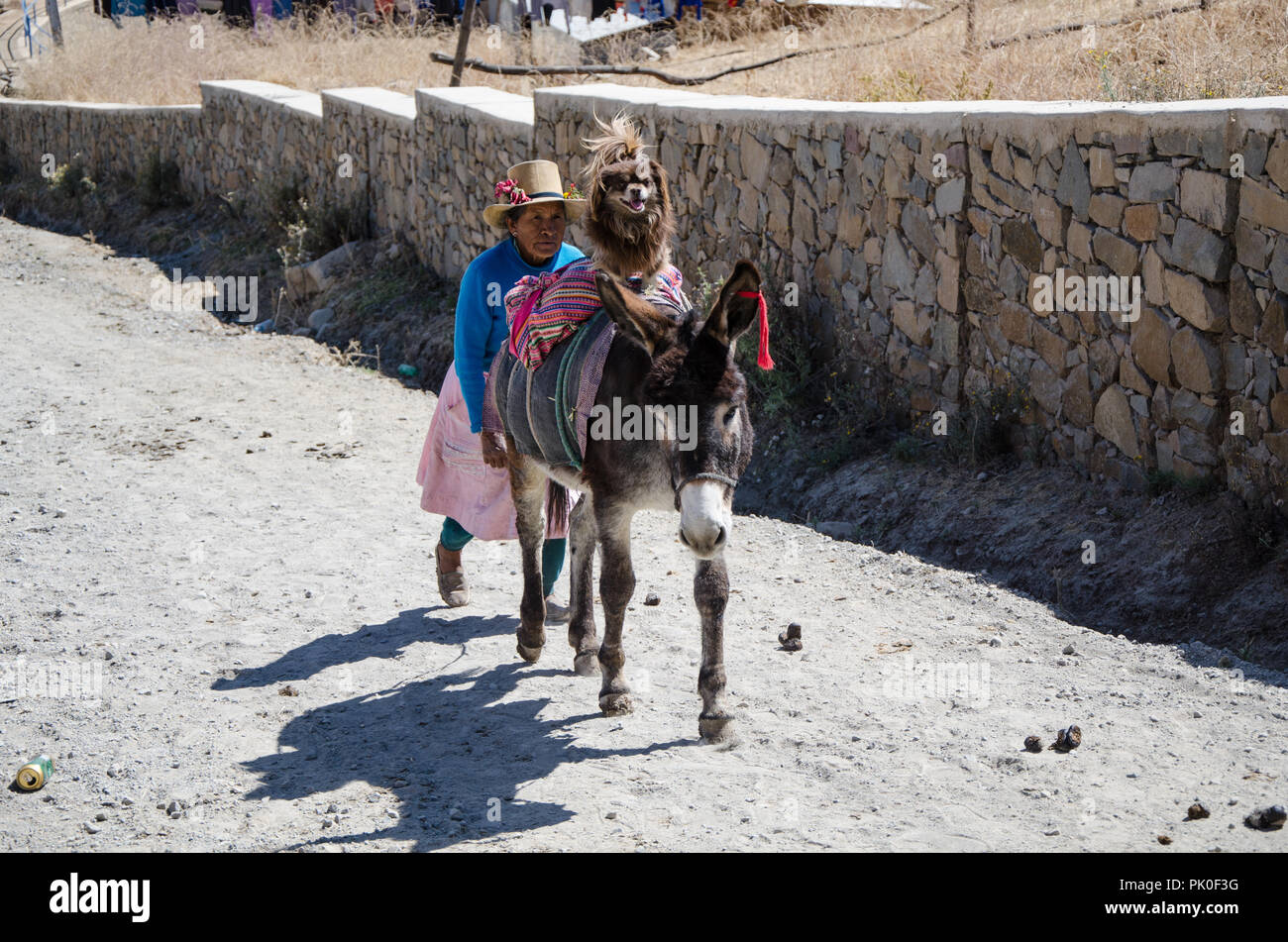 Lima, Peru - 3 SEPTEMBER 2018: Farmers and citizens in the Marcahuasi mountains. Andean woman walking in the mountains with his dog above the donkey - Stock Image