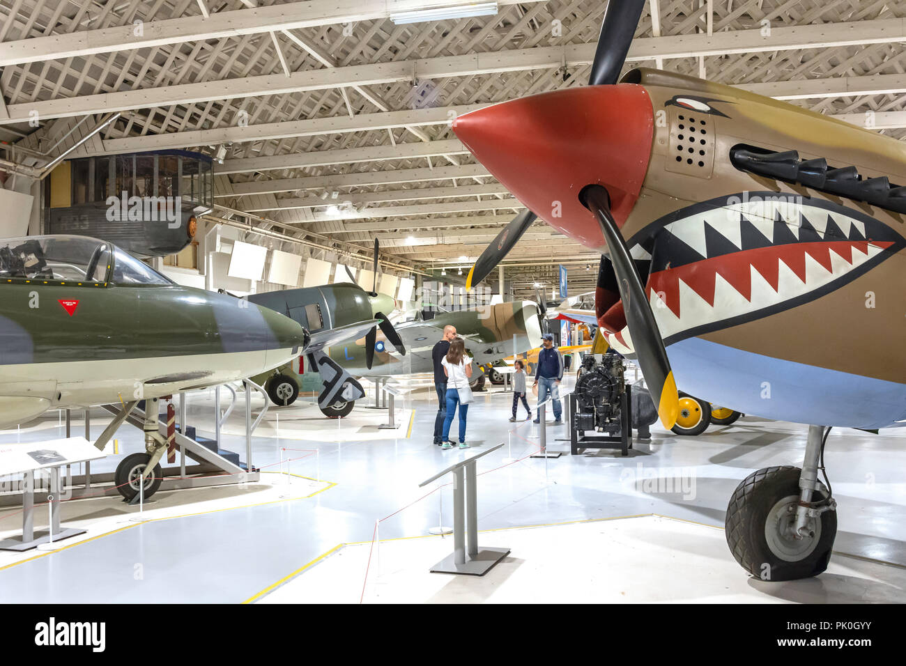 Curtis Kittyhawk II ground-attack fighter Royal Air Force Museum, Colindale, London Borough of Barnet, Greater London, England, United Kingdom - Stock Image