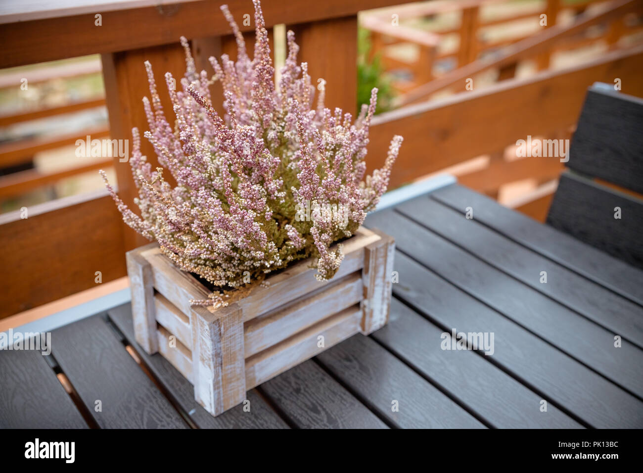 wooden Table on patio, terrace with autumn composition with heather in a basket . Autumn composition. Cafe table with autumnal decoration. Autumn style in interior. - Stock Image