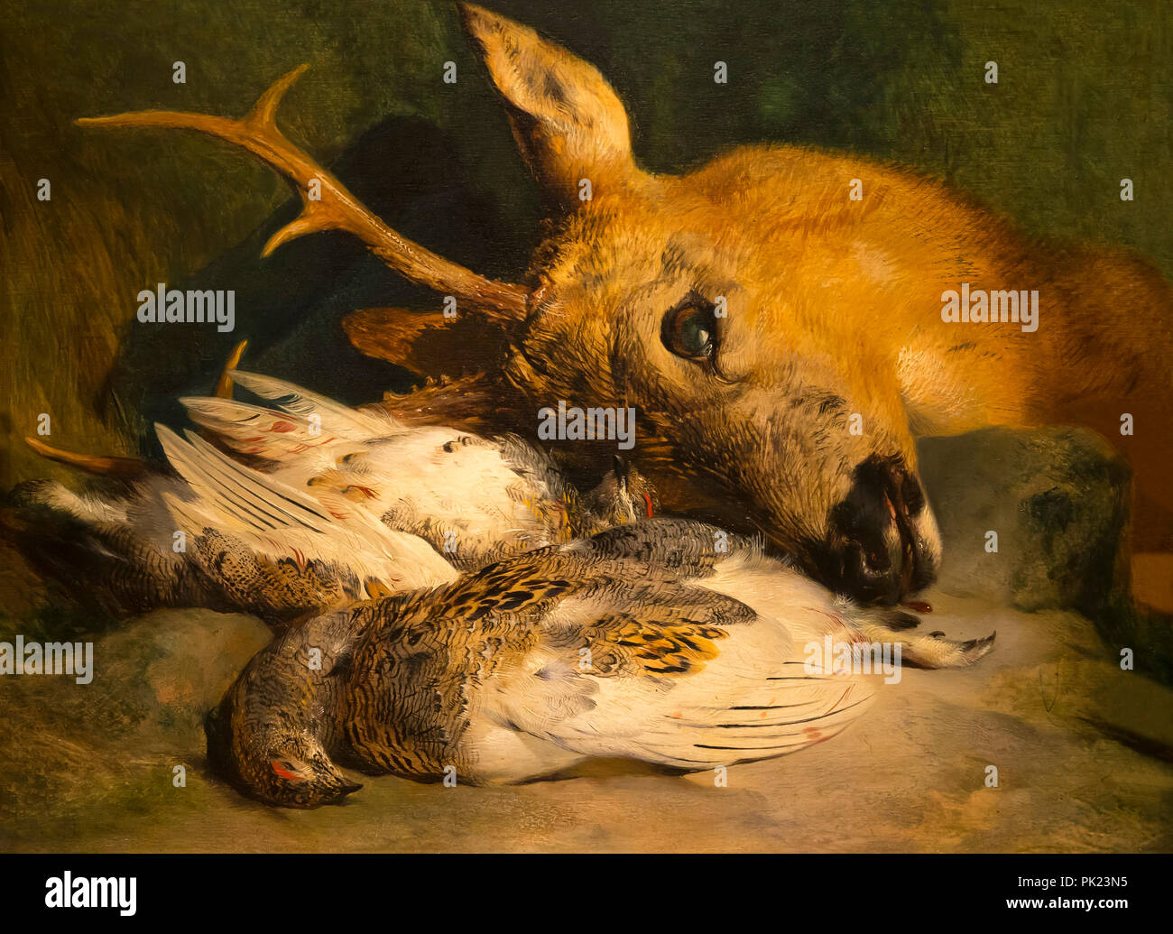 Head of a Roebuck and Two Ptarmigan, Edwin Landseer, circa 1830,Art Institute of Chicago, Chicago, Illinois, USA, North America, - Stock Image