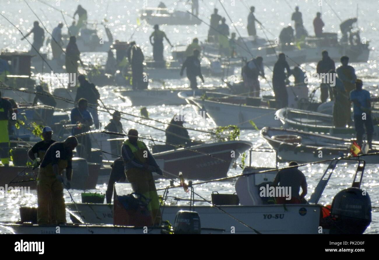 Noia, Galicia, northwestern Spain. 10th September, 2018. Hundreds of shellfish gatherers take part in the first day of the Seafood campaign of the cockle and the clam in Noia, Galicia, northwestern Spain, 10 September 2018. Some 1,500 members of Noia Fish Association fished in the Rias Baixas estuary during the event. EFE/ Lavandeira Jr Credit: EFE News Agency/Alamy Live News - Stock Image