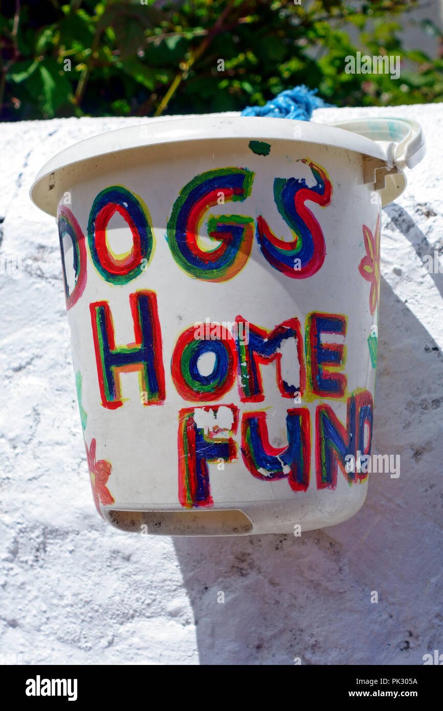 Bucket for donations for a local dogs home - Stock Image