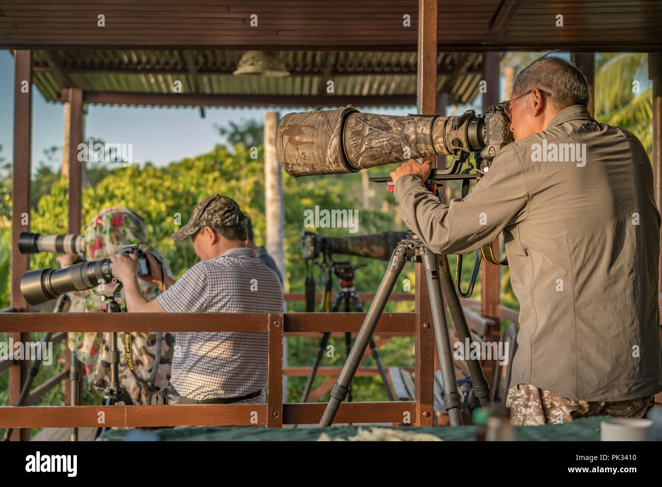 Photographers with long lens, Costa Rica - Stock Image