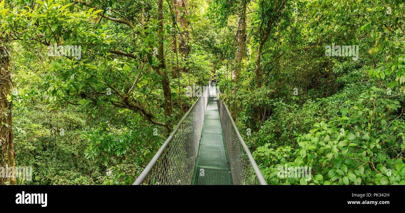 Monteverde Aventura Hanging Bridges, Selvatura Park, Costa Rica - Stock Image