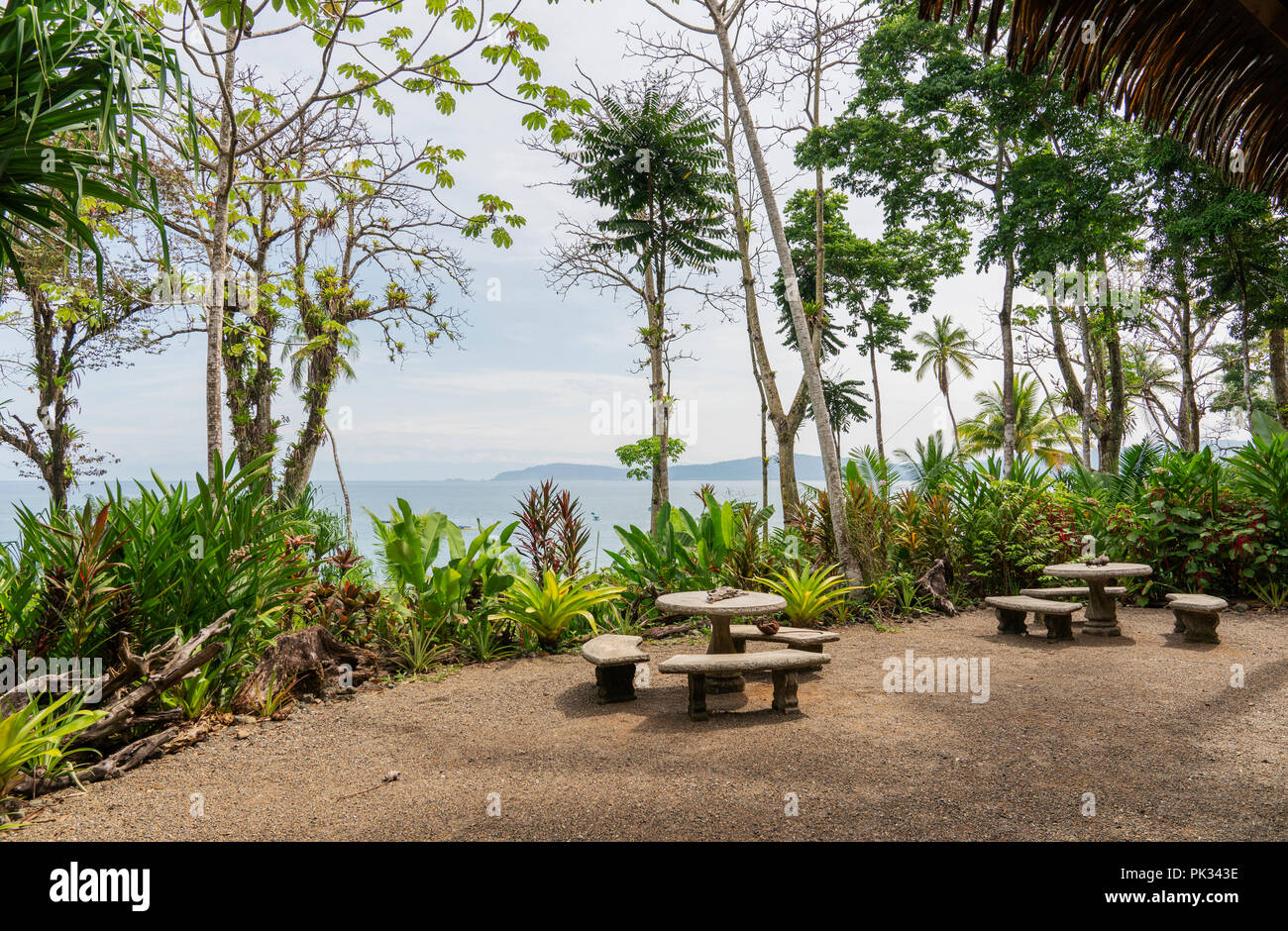 Beach, Corcovado National Park, Osa Peninsula, Costa Rica Stock Photo