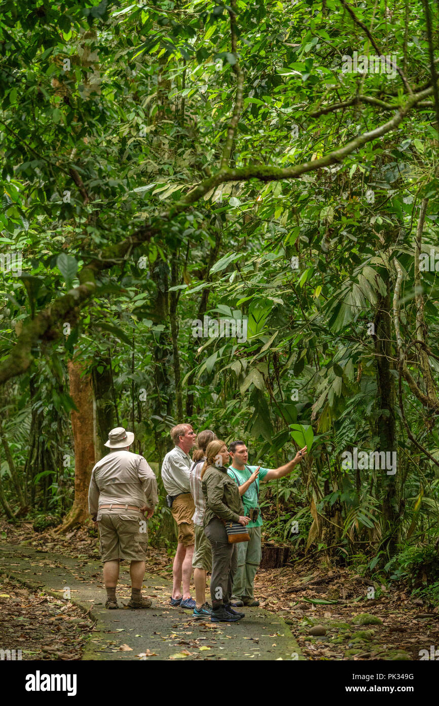 Tour guide with tourists, Tenorio Volcano National Park, Costa Rica - Stock Image