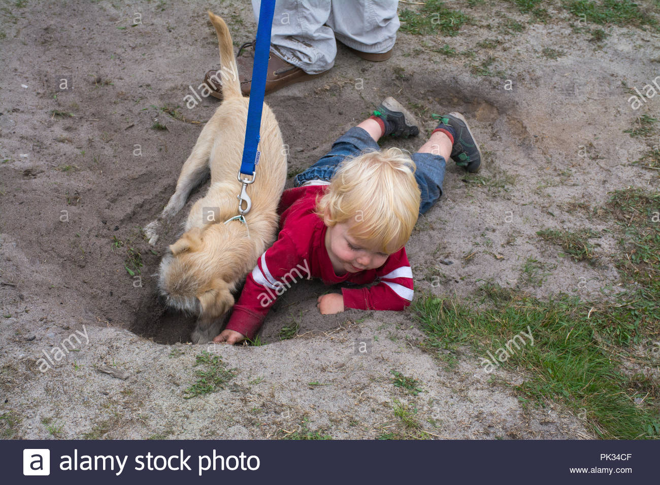 Small child playing in the dirt with a pet dog, digging a hole. Concept of children playing outside in nature - healthy childhood- natural immunity - Stock Image