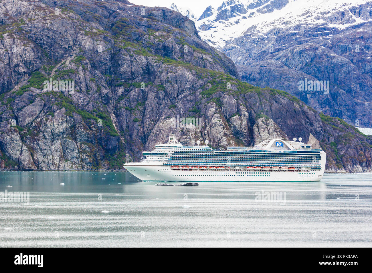 The Princess Cruises 'Ruby Princess' in the Tarr Inlet of Glacier Bay, Alaska, USA - Viewed from a cruise ship sailing the Inside Passage - Stock Image