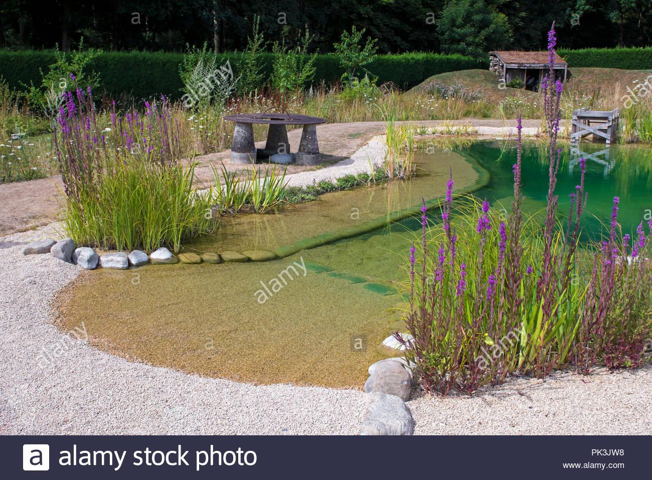 Natural Swimming Pond, luxury eco swimming pool Stock Photo ...