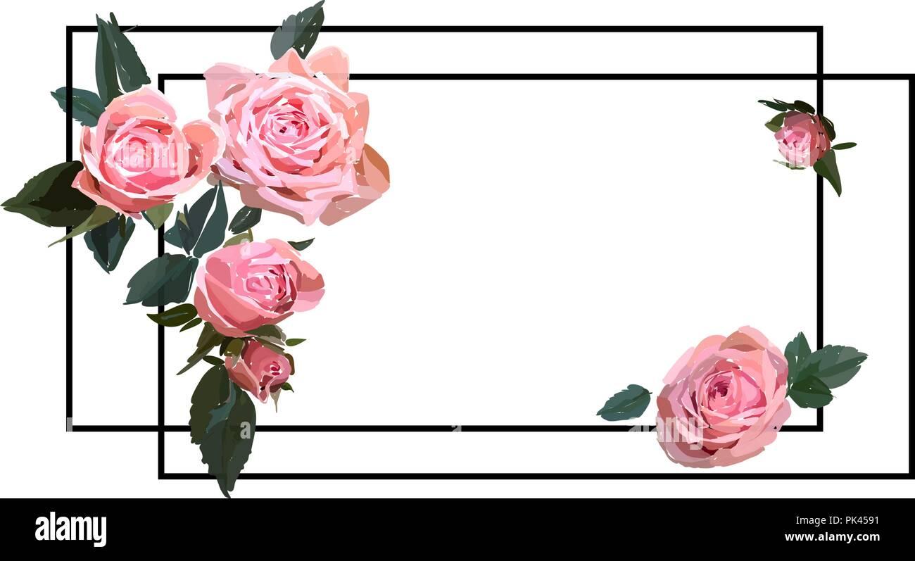 Floral Design Illustration. Garden Flower Pink Rose