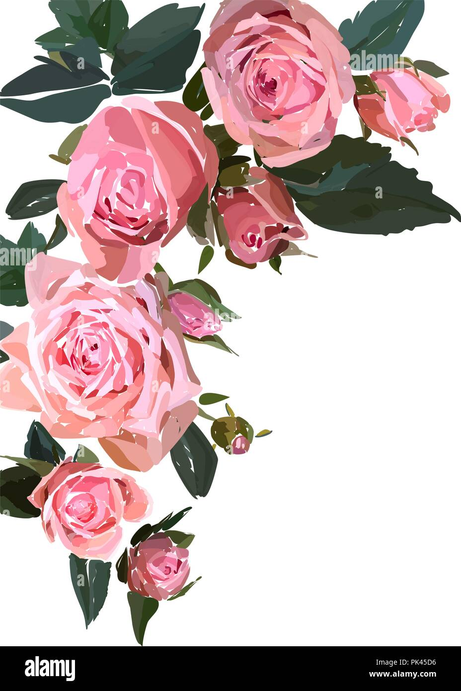 Floral Design Illustration Garden Flower Pink Rose Isolated On