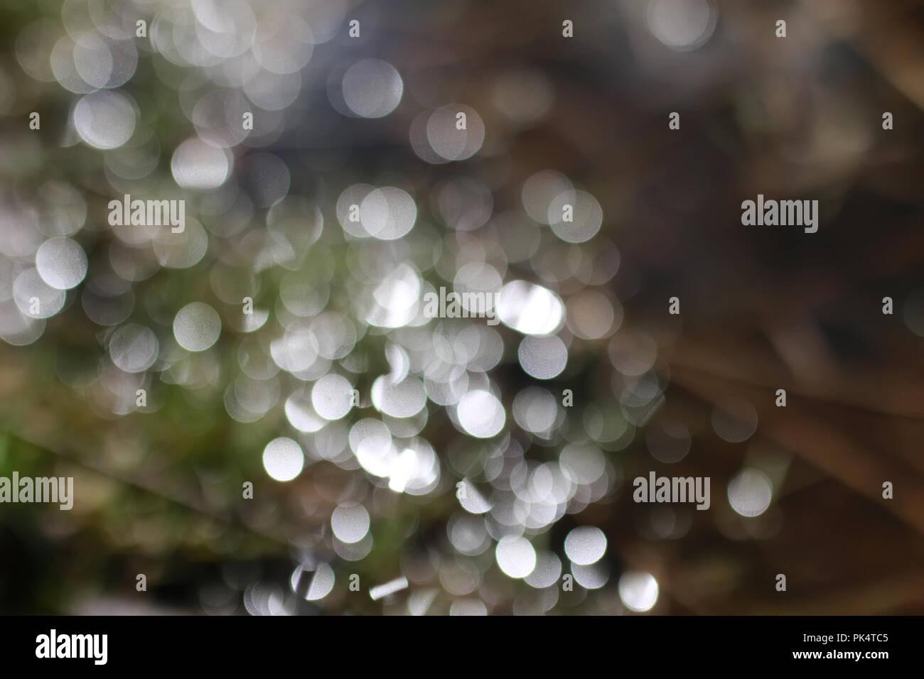 glare bokeh in water - Stock Image