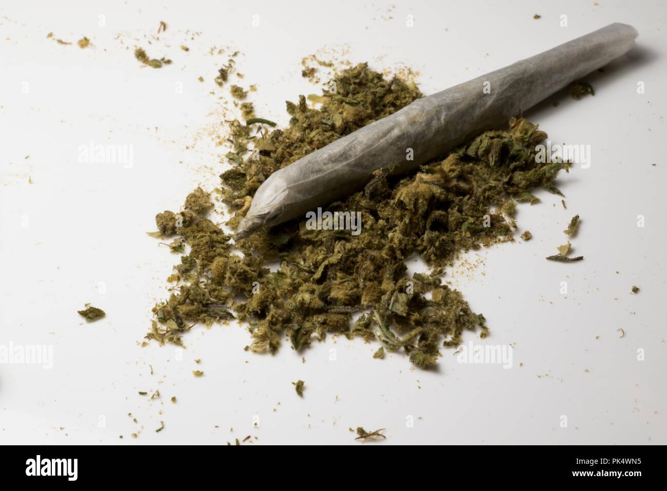 Ganja plant. Marijuana cigarette with small pile of weed. Medicinal cannabis. - Stock Image
