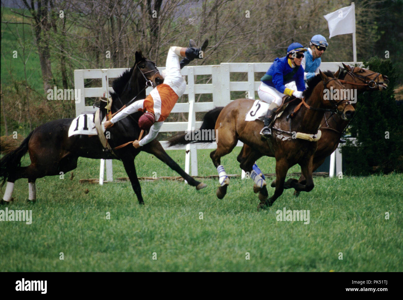 Jerry Gilman takes a huge fall during a timber race at the Oatlands Spring Point to Point, in Loudoun County, Virginia. Stock Photo