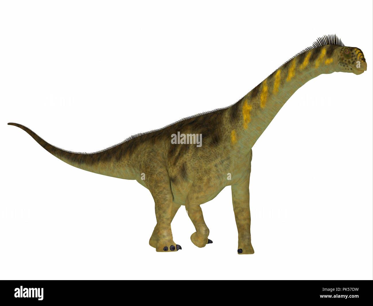 Camarasaurus Dinosaur Side Profile - Camarasaurus was a herbivorous sauropod dinosaur that lived in North America during the Jurassic Period. - Stock Image