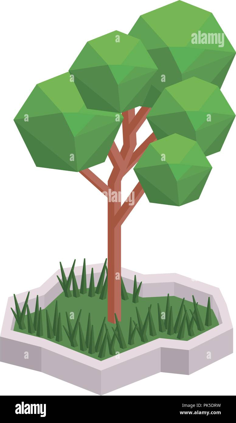 Isolated and isometric tree design - Stock Image