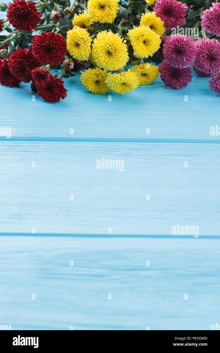Varieties Of Dahlia Flowers And Copyspace Blue Wooden Table Free