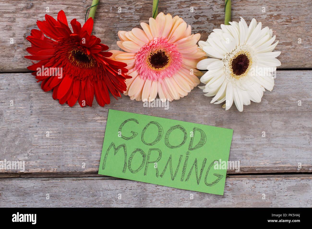 Good Morning Daisy Stock Photos Good Morning Daisy Stock Images