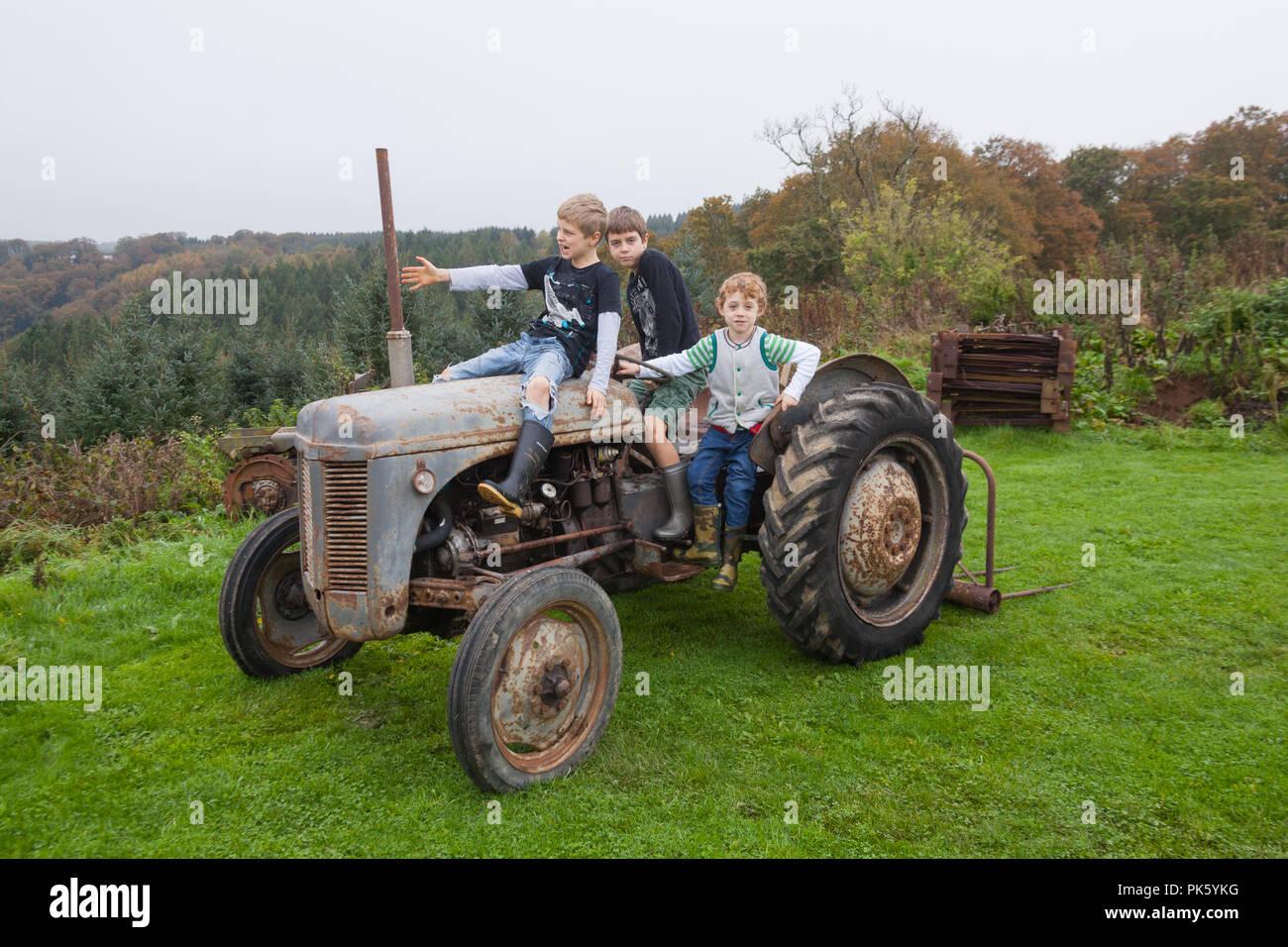 Ferguson vintage tractor badge T20 T21 TVO little grey Fergy quality YFC BNIP