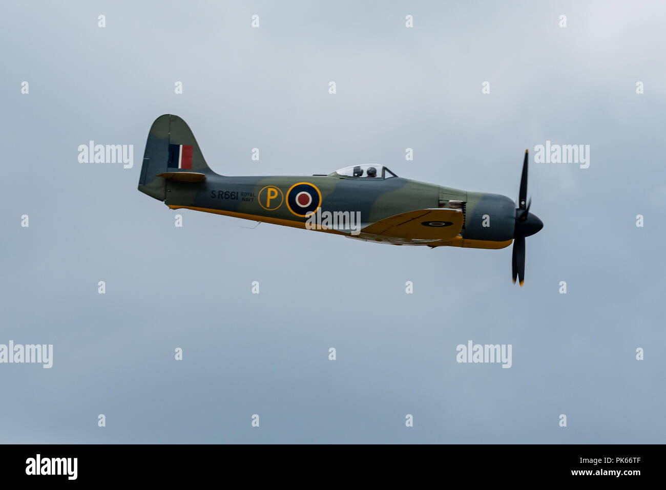 Hawker Sea Fury carrier borne fighter-bomber of the Fleet Air Arm. One of the fastest piston powered aircraft - Stock Image