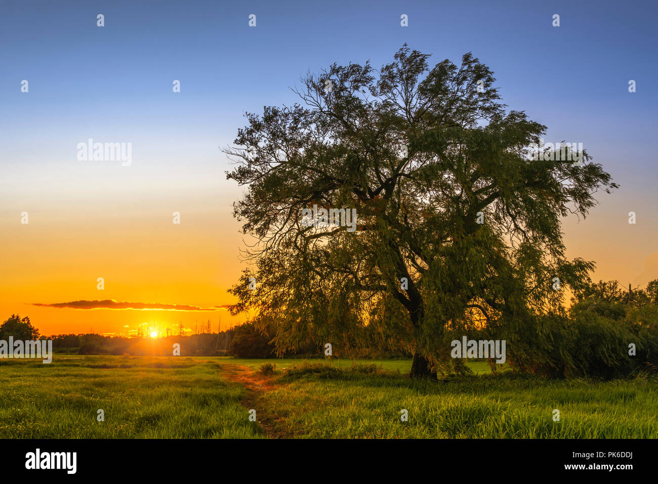 Rural sunset, countryside of Brandenburg. - Stock Image